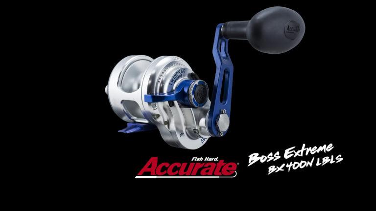 Accurate DÇtail Boss Extreme BX 400N LBLS