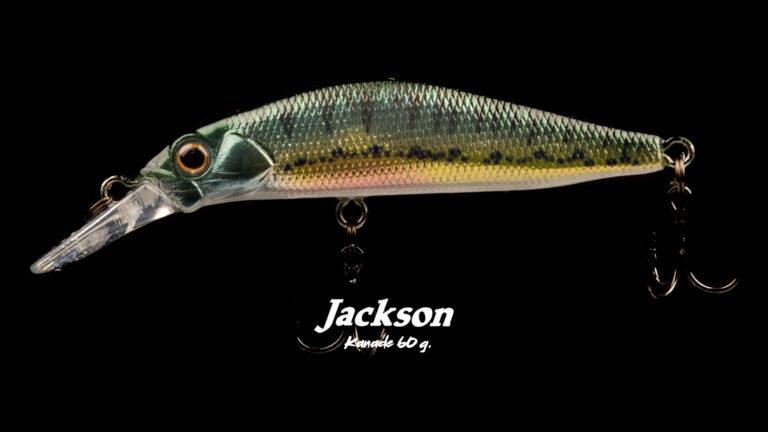 Jackson Kanade 60 1