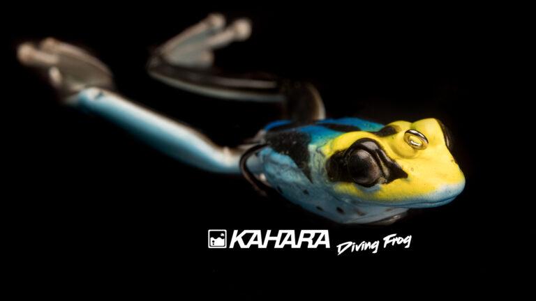 Kahara Diving Frog 2