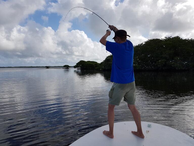 BONE FISH AUX LEURRES SOUPLES