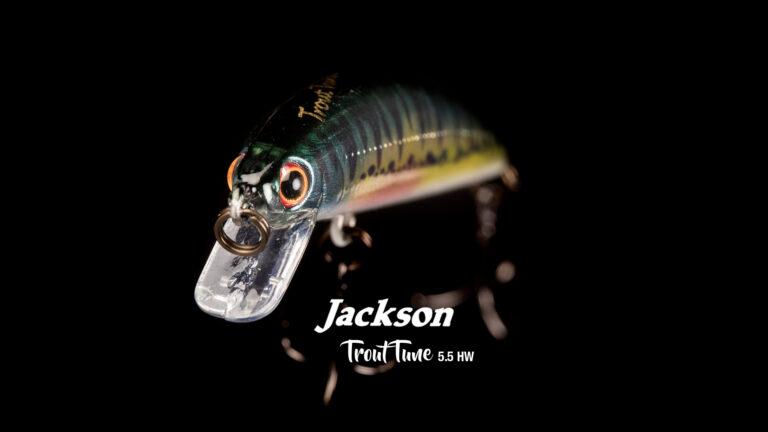 Jackson TroutTune 55HW Têtière