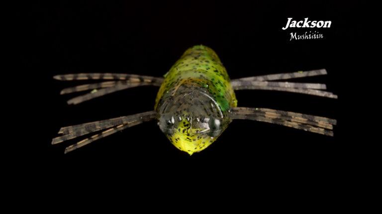 Jackson mushiiiin Détail 1 Web