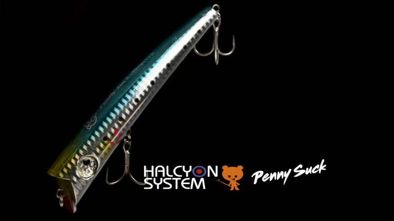 Hacyon System Penn Suck Détails 4