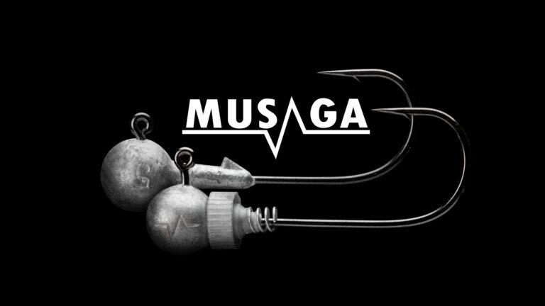 Têtes plombées Musaga