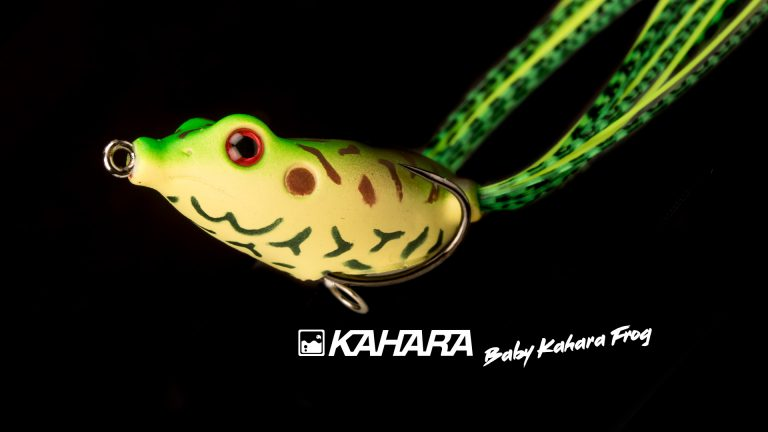 Kahara Baby Frog 6