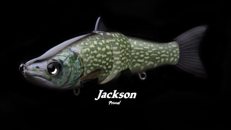 Jackson Primal